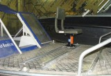 Салют 480 + Suzuki DF60ATS